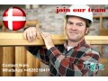 carpenter-all-round-builder-needed-for-good-job-with-good-pay-in-denmark-small-0